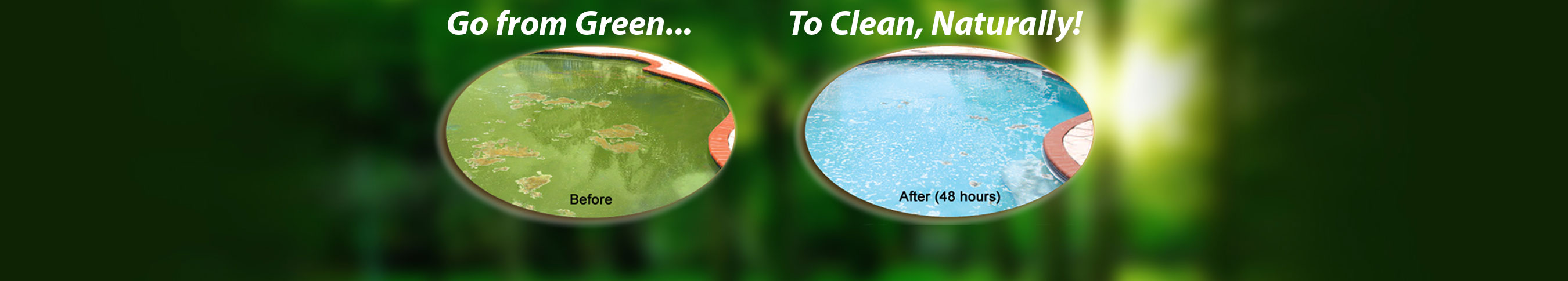 green-to-clean-2
